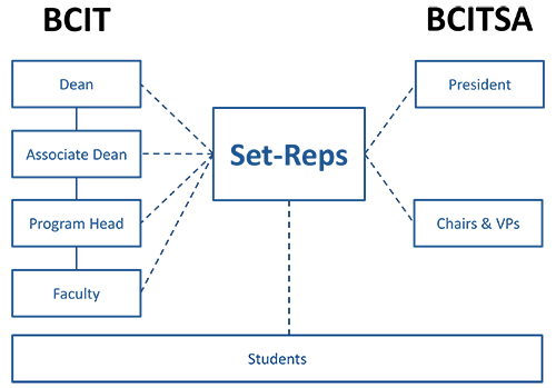 set rep structure