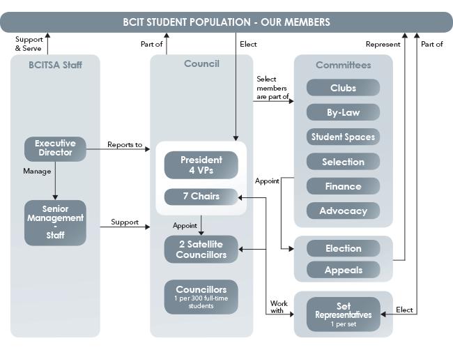 bcitsa organization structure